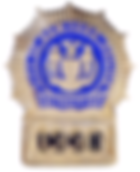 100px-Badge_of_a_New_York_City_Police_De