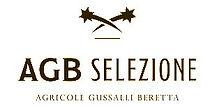 AGB logo_edited.jpg