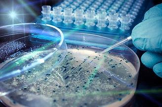 biology-tutor-hk.jpg
