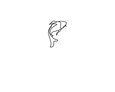 CZS-Logo-Tall.png