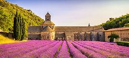 .Provence