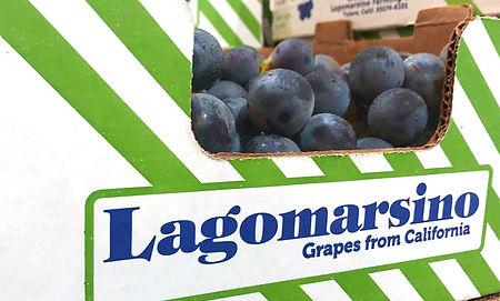 LagoMarsino-grape-box-2.jpg