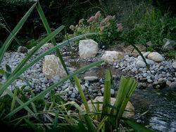 Pond Stream Sussex Brighton