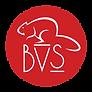 BVS_HI_RES_circle.png