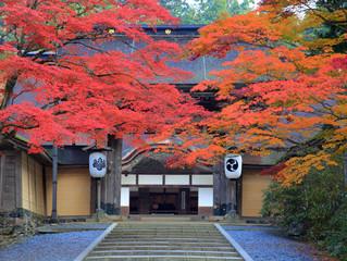 茅ヶ崎元町整体院 10月定休日のお知らせ