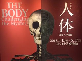 茅ヶ崎元町整体院 【特別展】人体神秘への挑戦