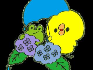 茅ヶ崎元町整体院 6/26火曜日お休みとさせていただきます。