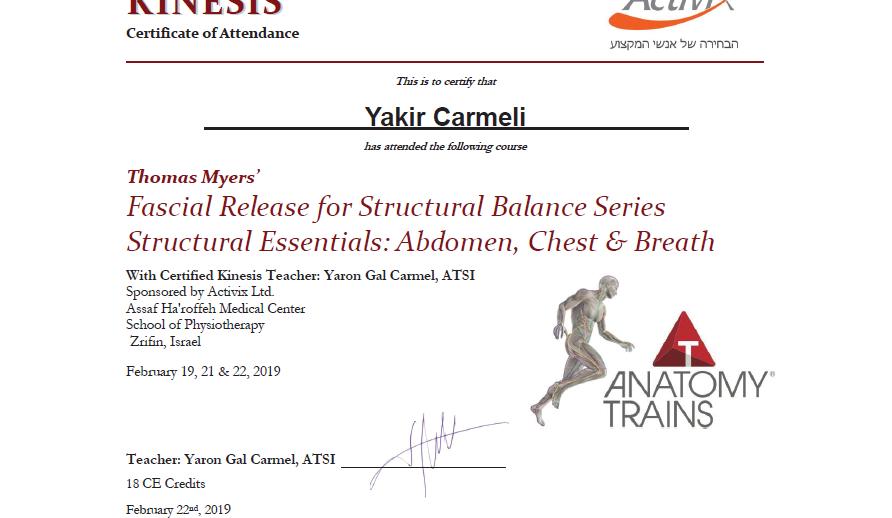 ATSI lvl 1 abdomen chest and breath.png