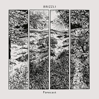 RAN024 Brizzli - Forecast.png