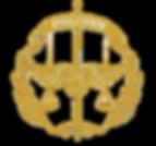 ipolcom logo.png