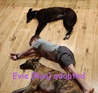 Evie & her USA family