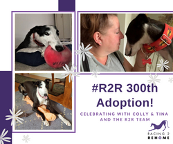 R2R 300th Adoption