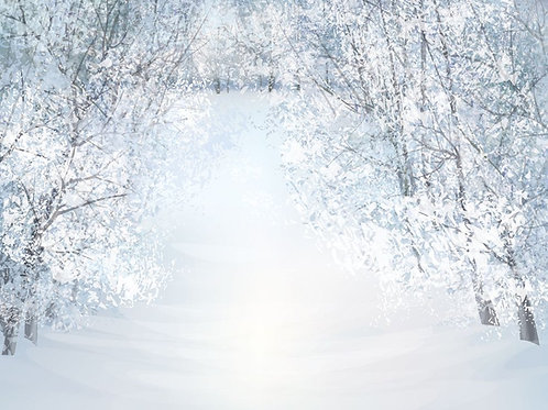 Fundo Fotográfico em Tecido Helanca Light - Inverno