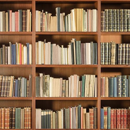 Fundo Fotografico Tecido Helanca Light - Livros