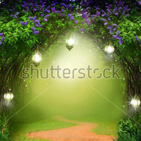 Fundo Fotográfico em Tecido Helanca Light- Floresta