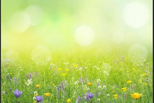 Fundo Fotográfico em Tecido Helanca Light - Jardim Flores