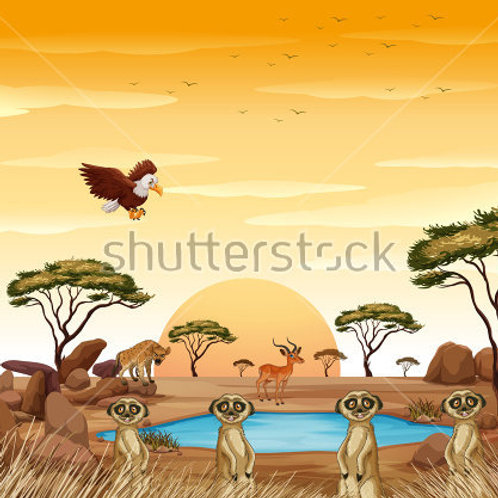 Fundo Fotografico Tecido Helanca Light - Safari