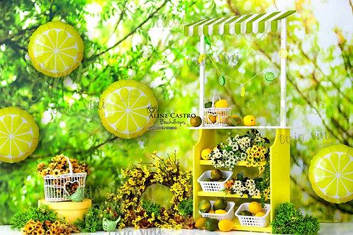 Fundo Fotográfico em Tecido Helanca Light - Frutas Limão - Caio Vini