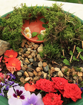 mini garden 4 - 8.jpeg
