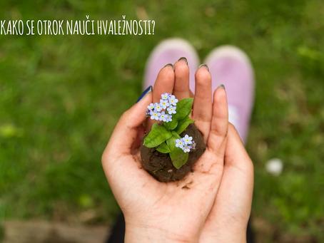 Kako se otrok nauči hvaležnosti?