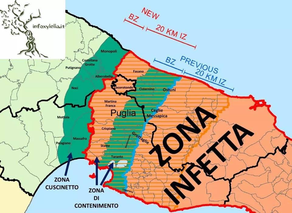 Mappa Xylella Puglia.Xylella Nuova Mappa Alberobello Nella Zona Cuscinetto Locorotondo Nella Zona Di Contenimento