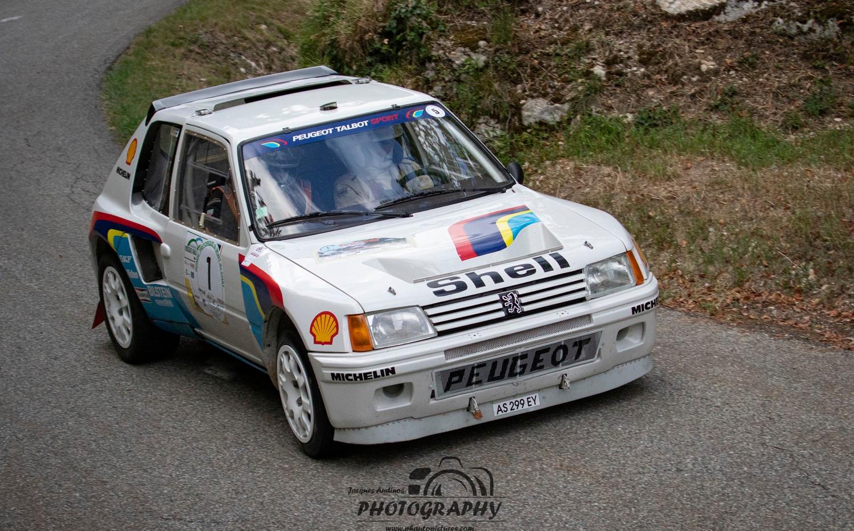 Peugeot VHC (9) (Copier).jpg