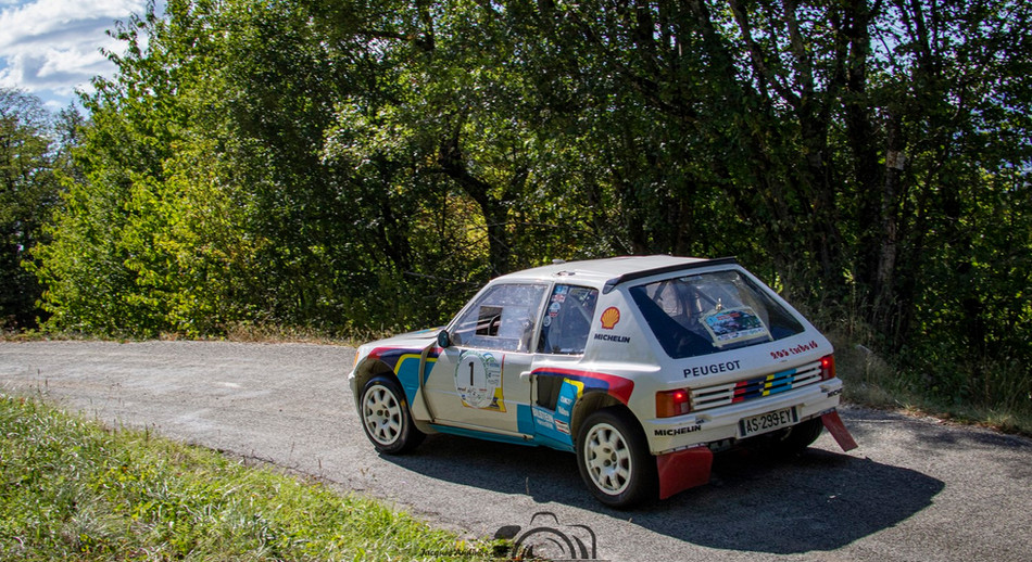 Peugeot VHC (14) (Copier).jpg