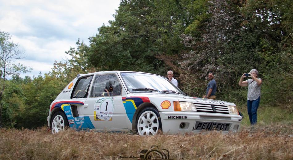 Peugeot VHC (6) (Copier).jpg