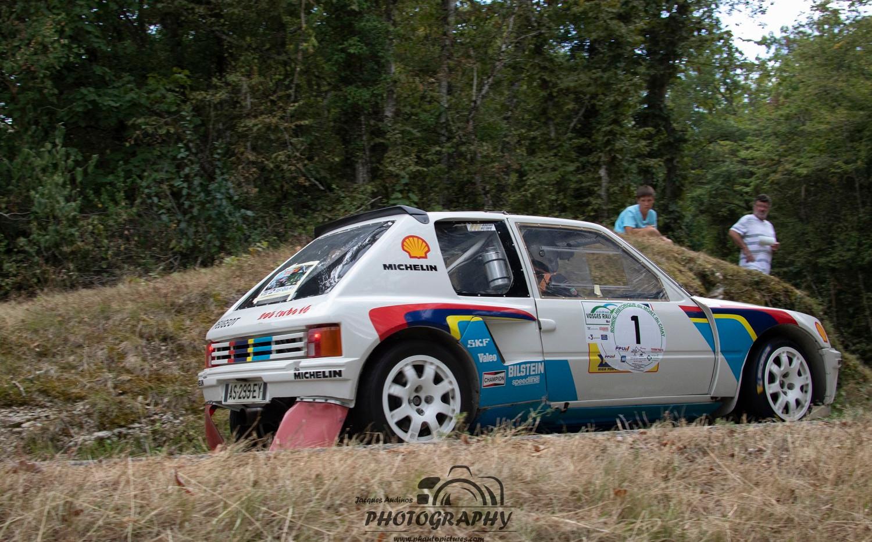 Peugeot VHC (7) (Copier).jpg