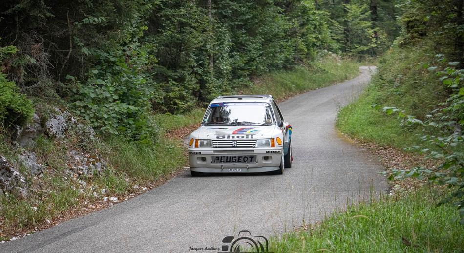 Peugeot VHC (11) (Copier).jpg