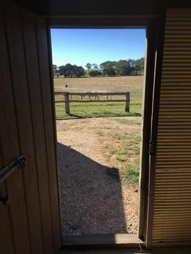 Cattlemans Inside 3.jpg