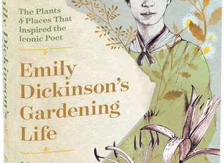 Wandering in Emily Dickinson's gardens with The New York Times