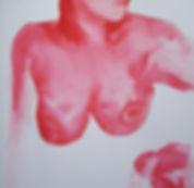 Rouge-poitrine.jpg