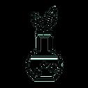 Paraben Free Test Icon.png