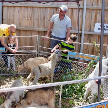 Apples & Honey Preschool Open Day