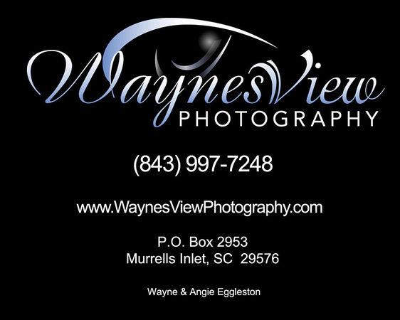 Wayne's view.jpg