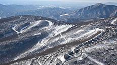 wintergreenoverview.jpg