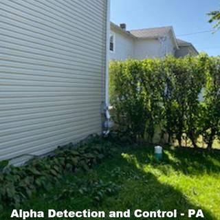 Alpha Detection Mitigation.JPG