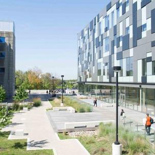 Biomedical Science and Psychology at York University