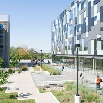 Business Administration at York University