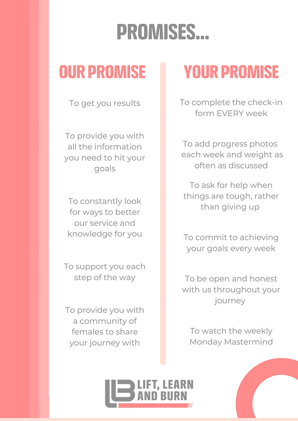 PROMISE DOCUMENT.png