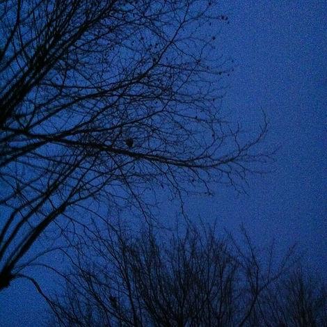 Dark, Drained.jpg