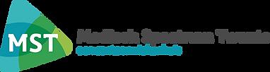 logo-santeon-mst-top.png