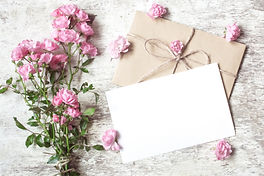 blank white greeting card with pink rose
