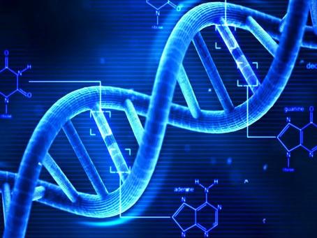Nutrigenetica, Nutrigenomica e dieta personalizzata, cosa sono?