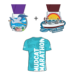 2 medals 1 shirt-01.png