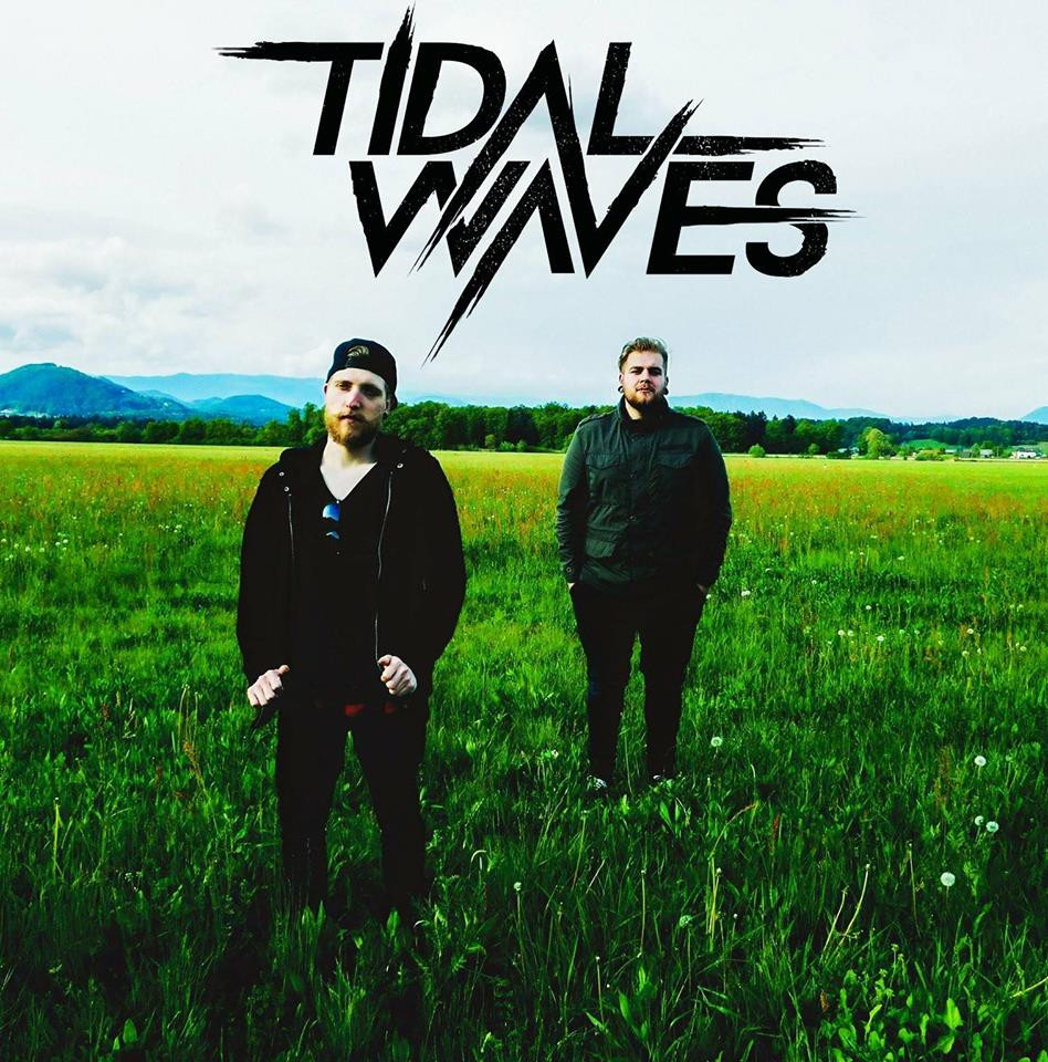 TIDVL WVVES Group
