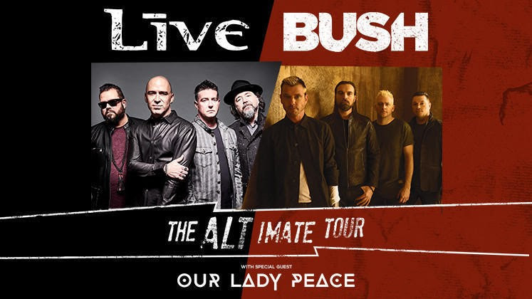 bush live