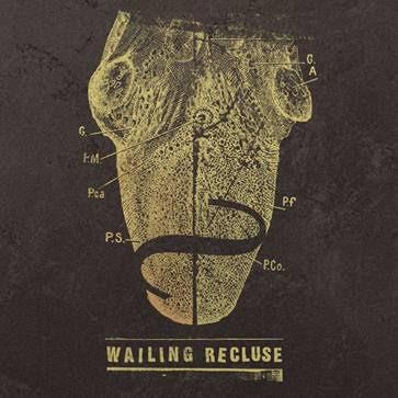 Wailing Reculse