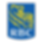 RBC Logo-01.png